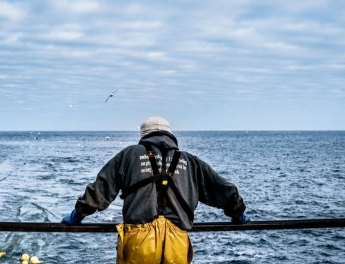 Scottish fishermen trial mobile real-time reporting app to avoid unwanted catches