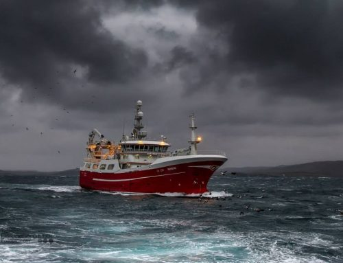 Scottish seafood leaders to innovate and act for prosperous, sustainable fisheries